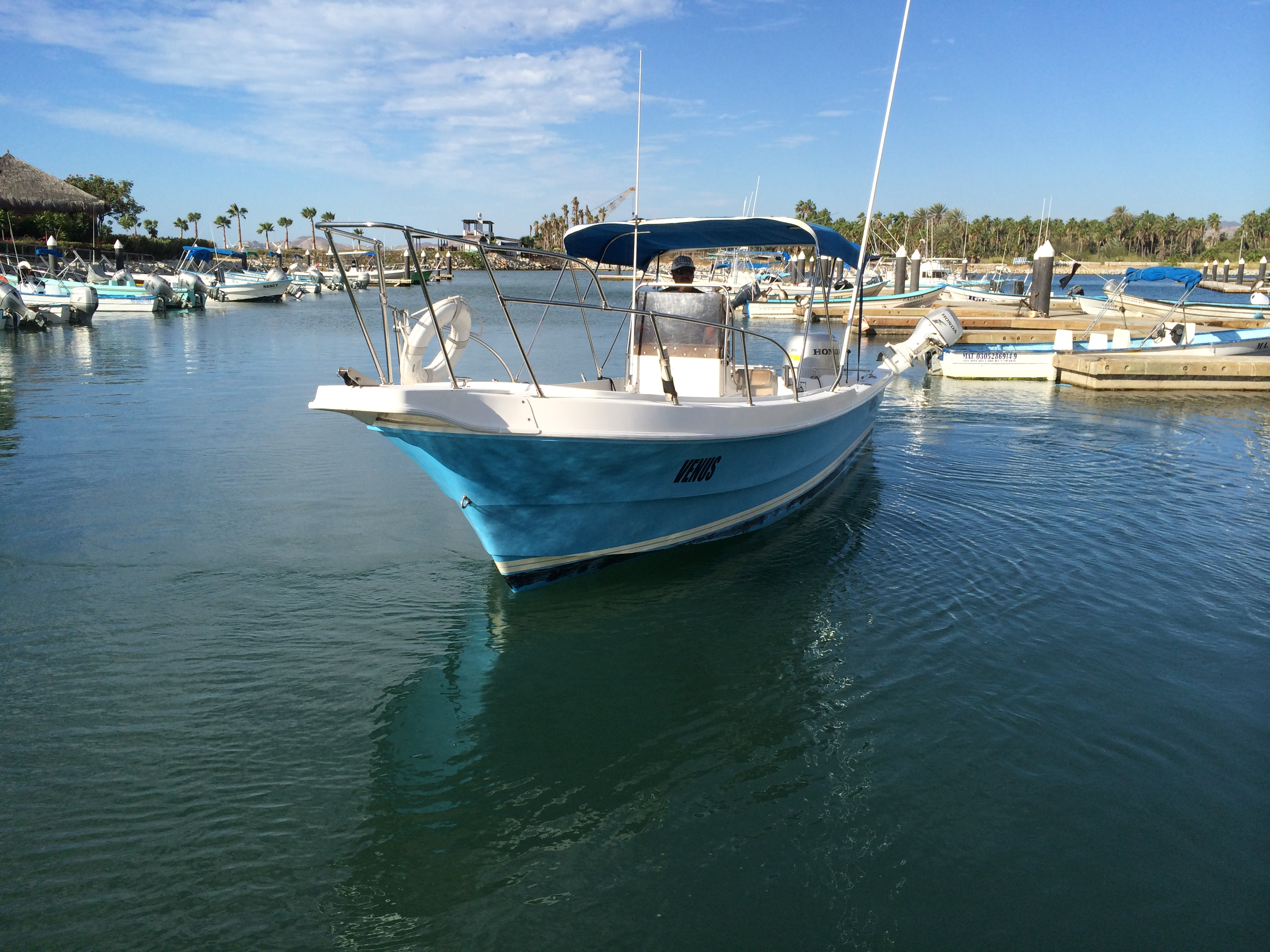 Gallery fishing tours san jose del cabo boat charters for San jose del cabo fishing charters